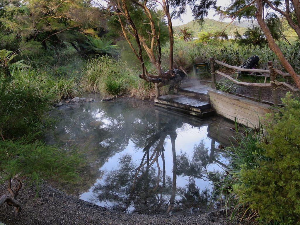Wairua Stream